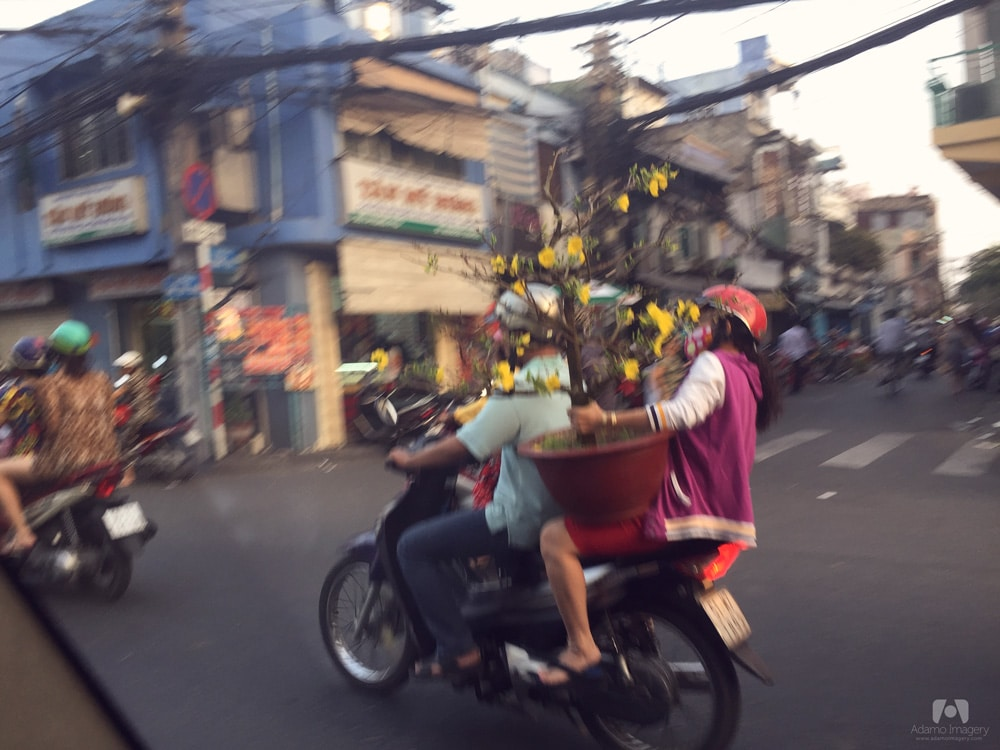 We were fascinated and impressed to see how the locals transported large items on their scooters. Everyone was buying their festive plants to ring in the Lunar New Year.
